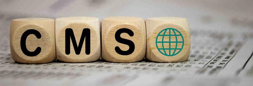 CMS d'un site web